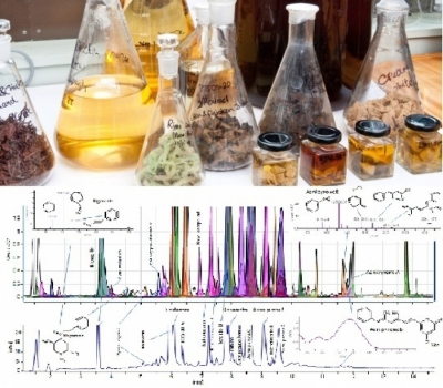 Extraction and Analysis of Bioactive Compounds